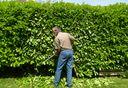 jardinage casablanca
